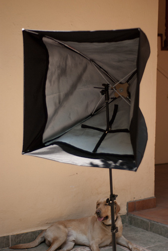 Runner up #1 - DIY 28  Apollo Softobox from scratch & How To Build 24 DIY Softboxes - DIY Photography