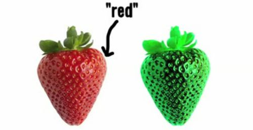 Philosophy Friday: Color Perception