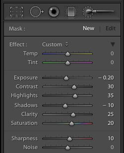 Step 5 – Enhancing Detail via Filters & Brushes