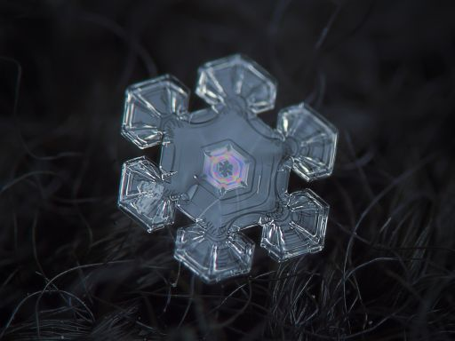 Beautiful Snowflakes Photographs Shot With A Point And Shoot And Some Gaffers Tape