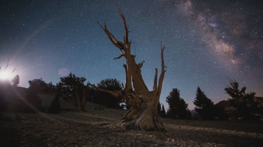 This Epic Timelapse Of California Will Make You Want To Re-locate