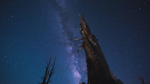 Breathtaking Time Lapse of The Western United States