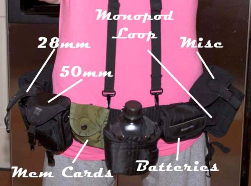 Army Surplus Camera Carrying Belt