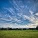 Killerton Sky (plebism [Simon])