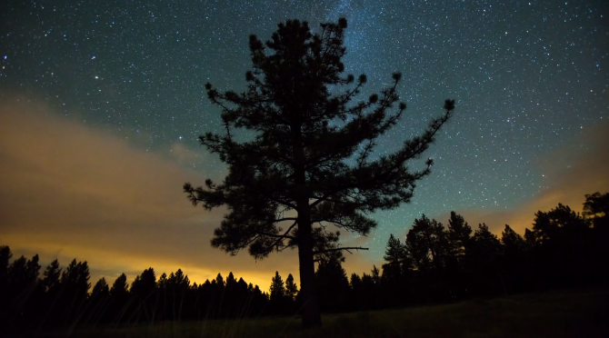 A Time-Lapse with a Twist: The Night Sky in Sync with the Camera