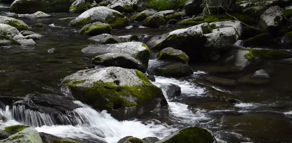 Don't Have a Polarizer? This Tutorial Just Might Convince You to Get One