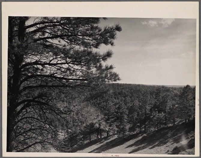 Pine Ridge Project, Dawes County, Nebraska. 1936.