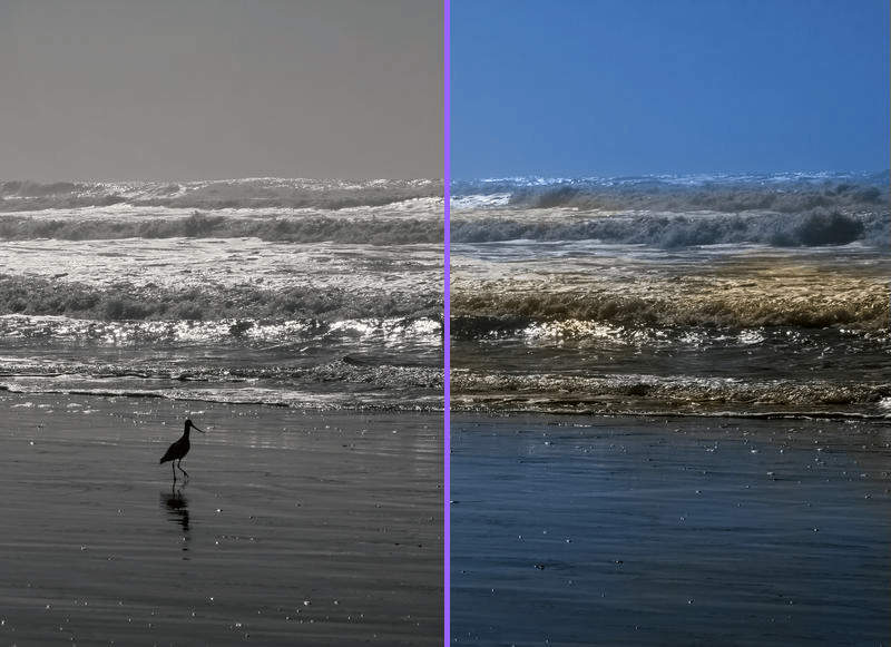 Algorithmia colorizes your black and white photos but they have much to improve