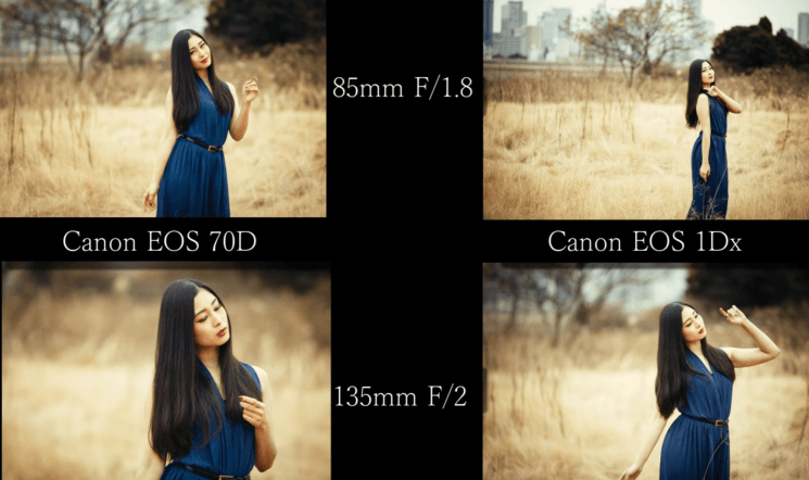 Crop vs. full frame sensor: how different cameras perform with the same lens