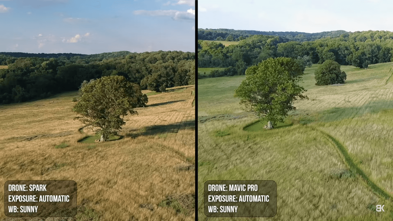 Now When You Compare The Spark With Phantom 4 Pro Difference Becomes More Obvious Phantoms Image Quality Is Unarguably Better