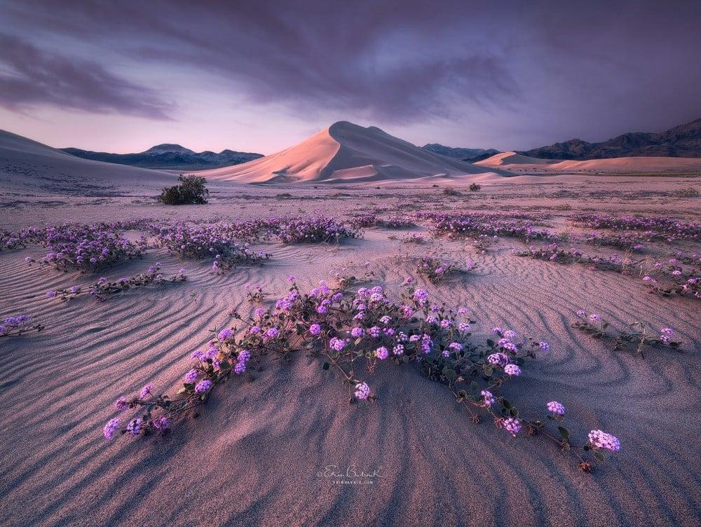 15 inspiring landscape photographers you should follow - DIY Photography